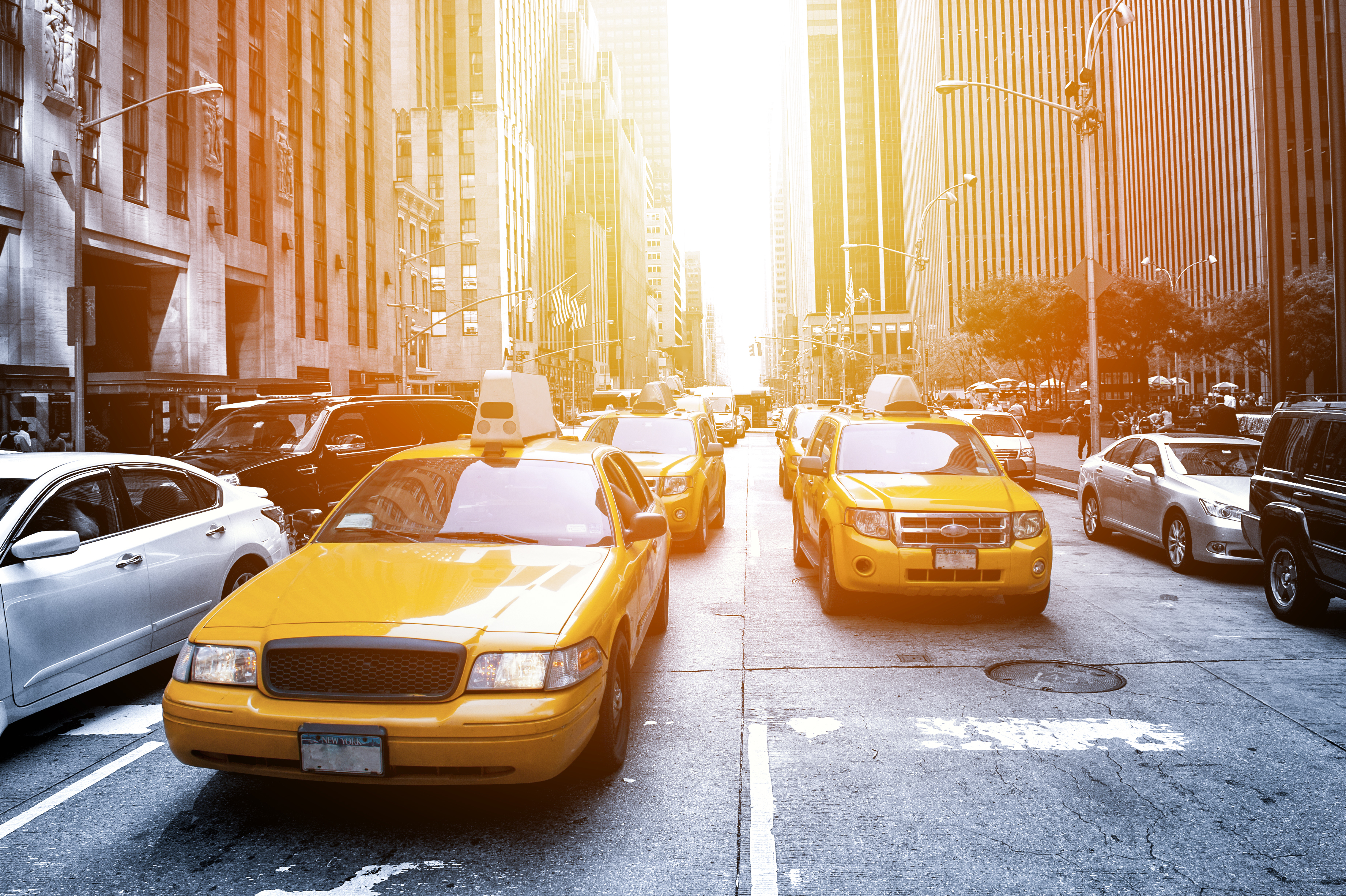 order a1 taxi now
